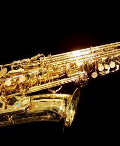 AWO1 - Yanagisawa Professional Alto Sax