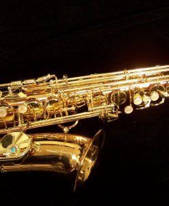 AWO2 - Yanagisawa Professional Bronze Alto Sax