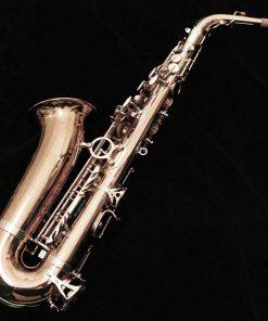 Yanagisawa AWO20 Elite Bronze Alto Sax