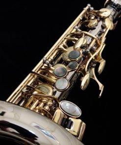 Kessler Custom Deluxe Series Alto Sax