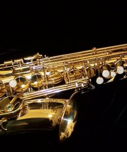 Student Alto Saxophones