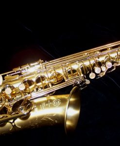 52JM Selmer Paris Series II Brushed Matte Alto Sax