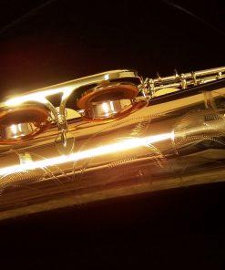 Yanagisawa TWO2 Pro Bronze Tenor Sax