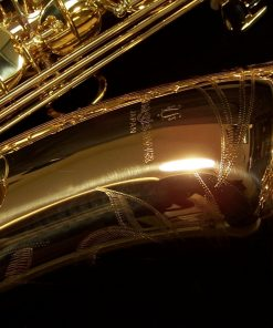 Yanagisawa TWO2 Pro Bronze Tenor Sax