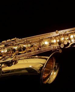 Professional Tenor Saxophones - Selmer Paris Reference