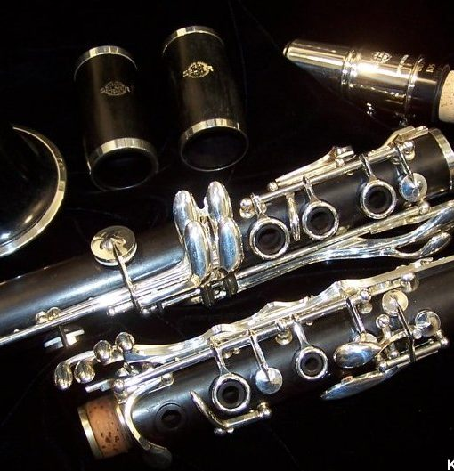 Selmer Paris Signature Clarinet