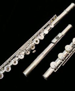 Di Zhao 500 Series Flute