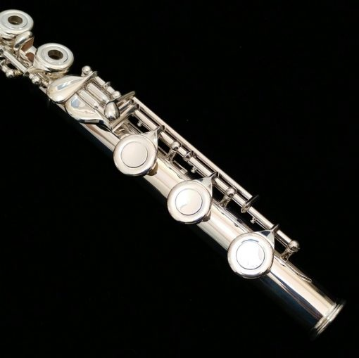 Di Zhao 600 Series Solid Silver Flute