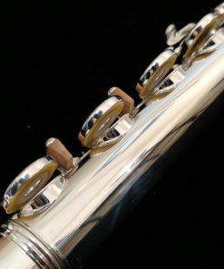 Di Zhao 700 Series Solid Silver Flute