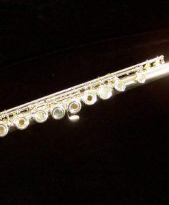 Di Zhao 600 Series Flute