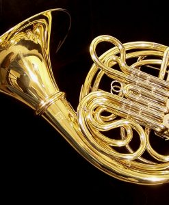 Solist SFH-389 Intermediate French Horn - Screwbell