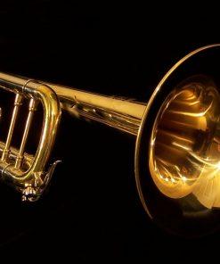 K.Custom Artist Series Pro Raw Brass Trumpet