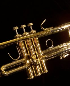 Bach 180 Series Stradivarius Trumpets | 180-37 Shown