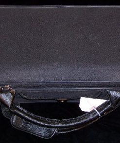 Classical Strings Violin Case