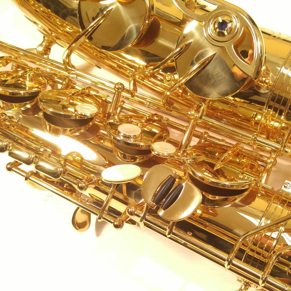 Used Tenor Sax : store used demo yanagisawa two10 tenor sax wo series ~ Russianpoet.info Haus und Dekorationen