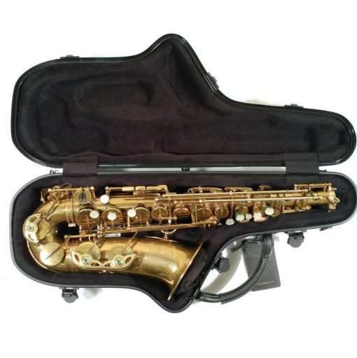 BAM Cabine Alto Sax Case