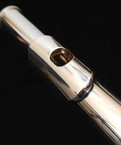 Haynes Classic Headjoint with 14k Gold Riser