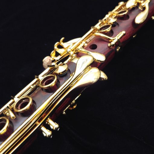 Backun Protege Clarinet - Cocobolo with Gold Keys