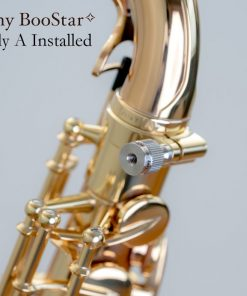 Yanagisawa BooStar Neck Screw - A Installed