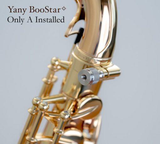 Yanagisawa BooStar Neck Screw - A Installed