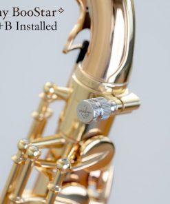 Yanagisawa BooStar Neck Screw - A+B Installed
