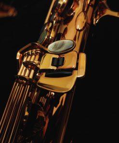 Kessler Custom Standard Series Tenor Sax - Dark Lacquer
