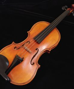 Scott Cao DaSalo 750E Violin - One Piece Back