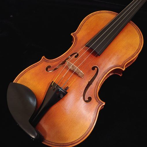 Scott Cao DaSalo 750E Violin - One Piece Back